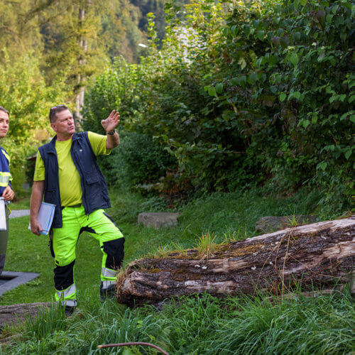 Werkhofmitarbeitende in Lichtensteig besprechen die Pflegemassnahmen einer Hecke. Diese könnte in Zukunft mit weiteren Straucharten aufgewertet werden. Bild: ANJF, Nicolas Zonvi